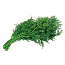 Dill (Large bundle)