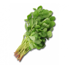 Purslane (Bundle)