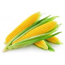 Corn (Kg)