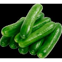 Cucumber (Kg)