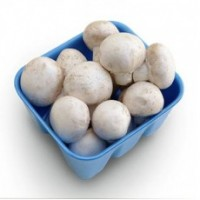 White mushrooms (Box/250g)