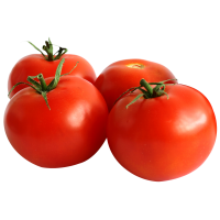 Tomatoes (Kg)